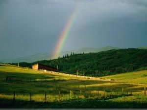 Amazing Rainbow Wallpaper | High Resolution 1600 x 1200