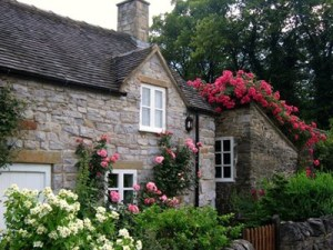 Wallpapers - British Manor Garden