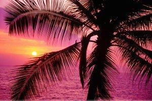 Nice Sunset Wallpaper Pack 1 | High Resolution 1999 x 1333