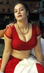 apoorva hot saree
