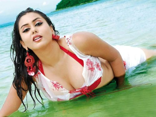 hot tamil actress boobs wallpapers stills